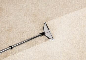 Como fazer a manutenção da limpeza de tapete?